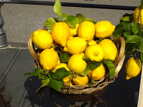 Lemons-of-the-amalfi-coast-99