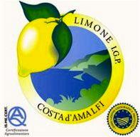 Limone_Costa_dAmalfi_IGP